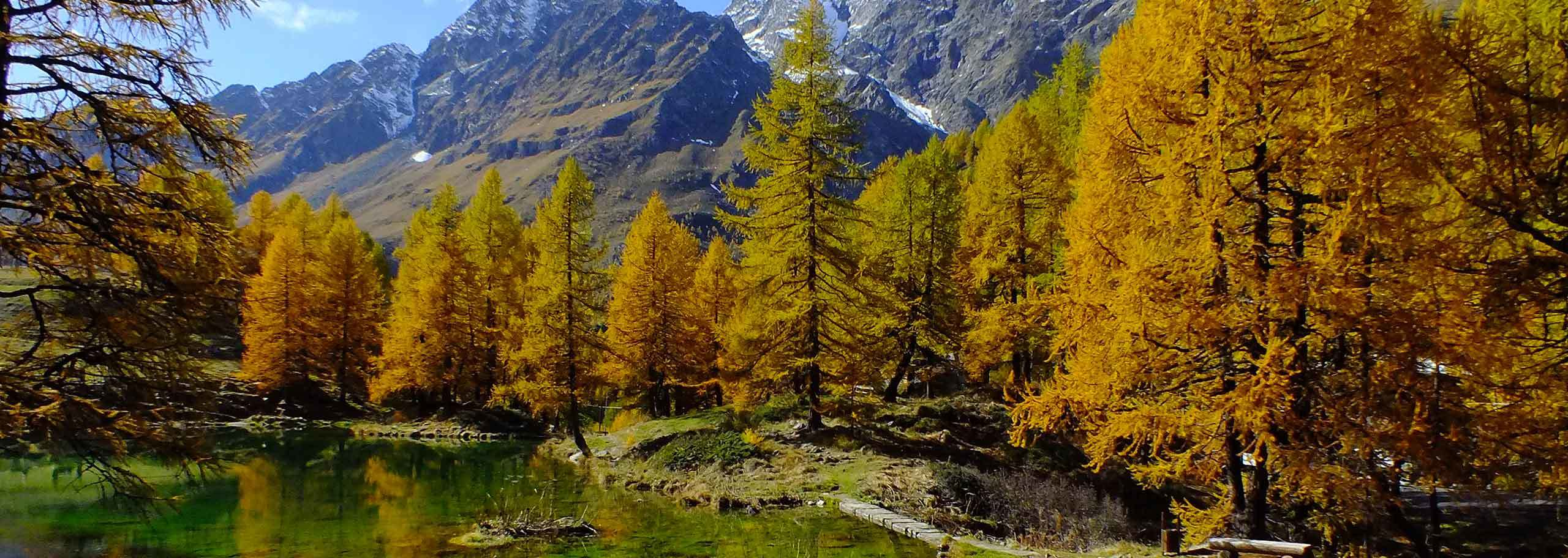 Trekking in Alagna Valsesia with a Mountain Guide