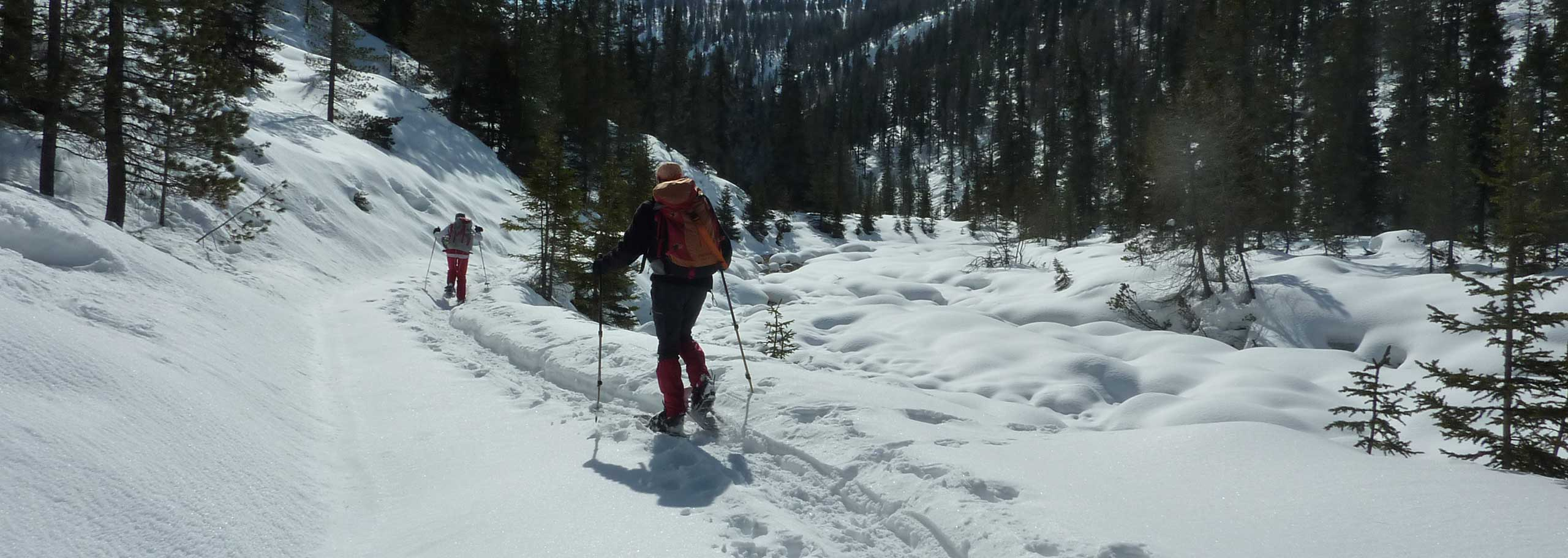 Snowshoeing with a Mountain Guide in Valle Aurina and Valle di Tures