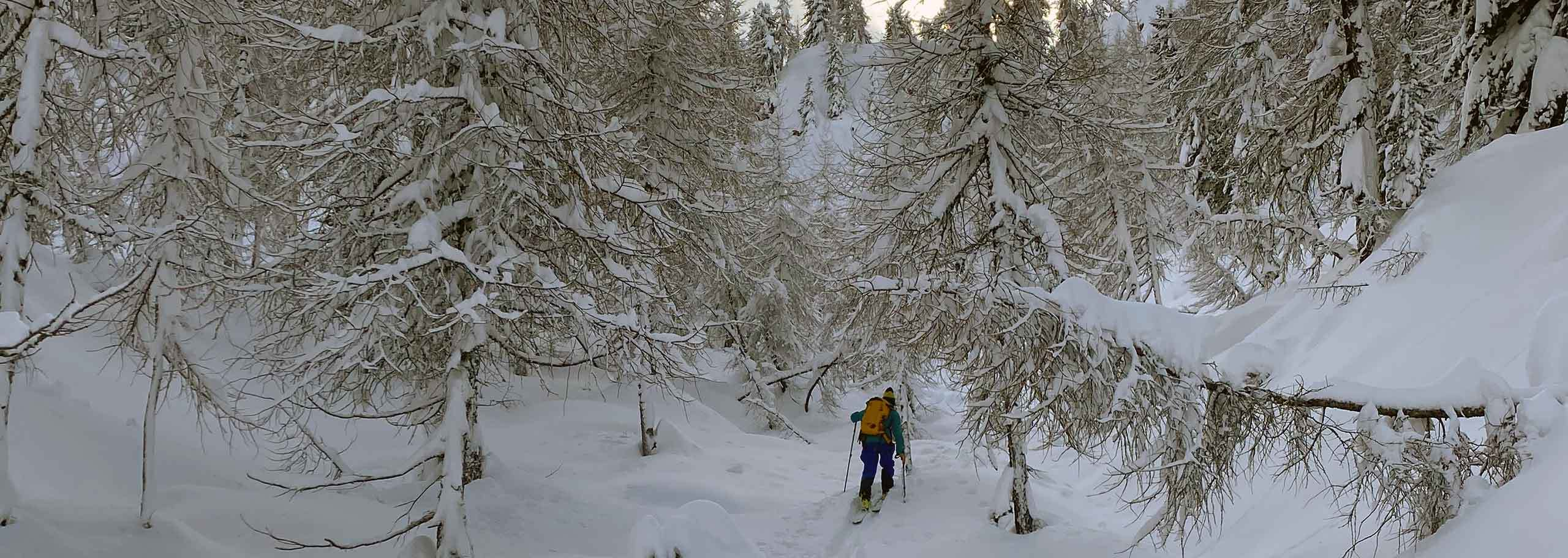 Ski Mountaineering in La Thuile with Mountain Guide