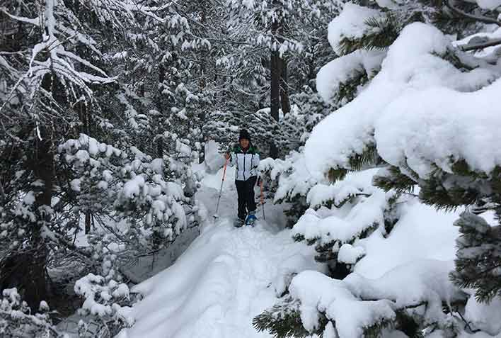 Snowshoeing in Valle Anterselva